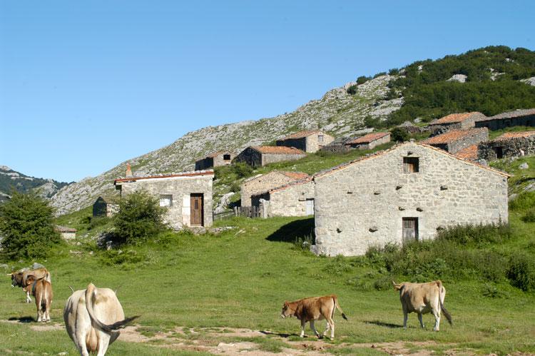 Знакомство с бытом и традициями селений Пиков Европы