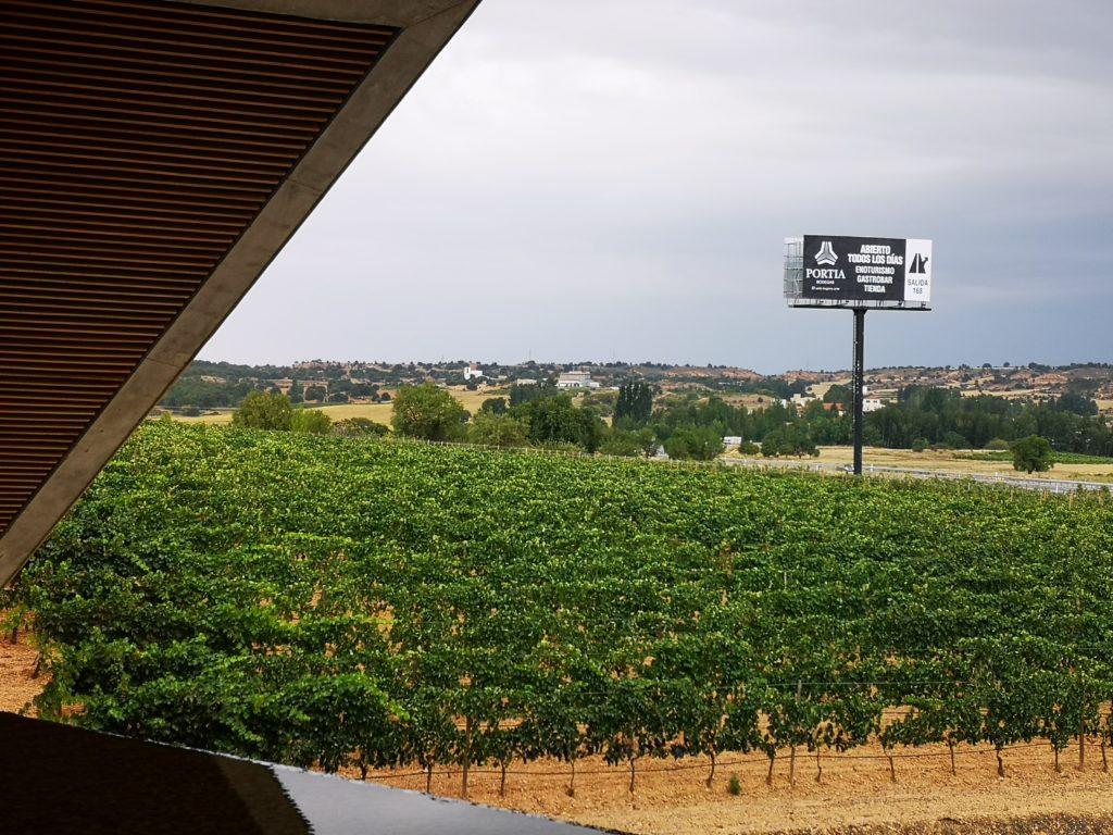 Экскурсии в зону виноделия Рибера дель Дуэро