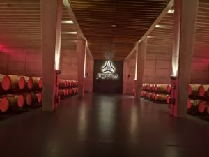 Знакомство с винным производством в Портии