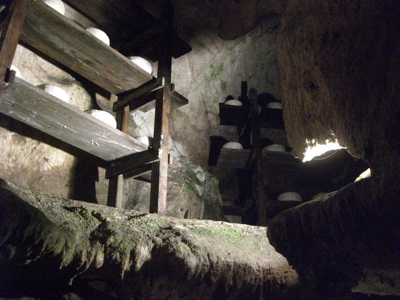 Знакомство с технологиями производства сыра Кабралес в Астурии