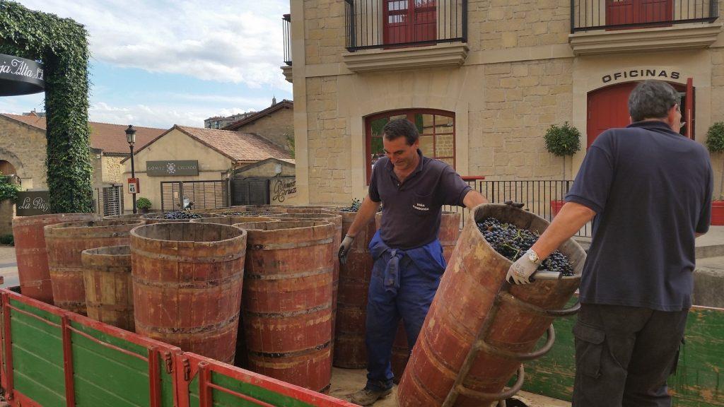 Посещение винодельни Лопес Эредия с русским гидом