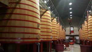 Знакомство с производством вина в винодельне Маркиз де Рискаль