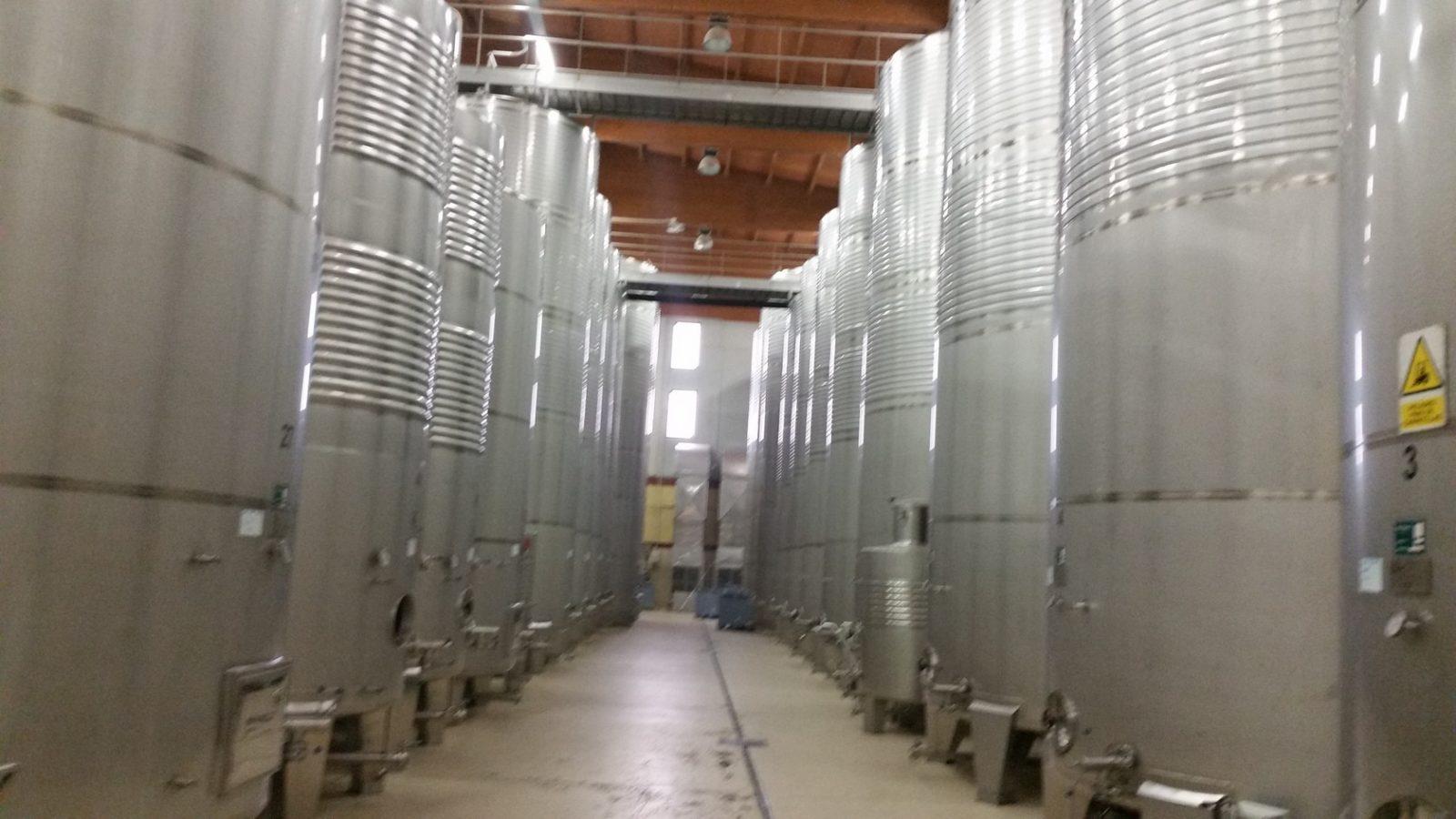 Знакомство с этапами производства вина альбариньо с гидом по Галисии
