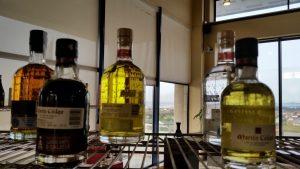 Дегустация крепких напитков и ликеров на винодельне Мартин Кодакс с гидом по северу Испании