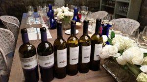 Дегустация вин и ликеров винодельни Пасо Сеньоранс