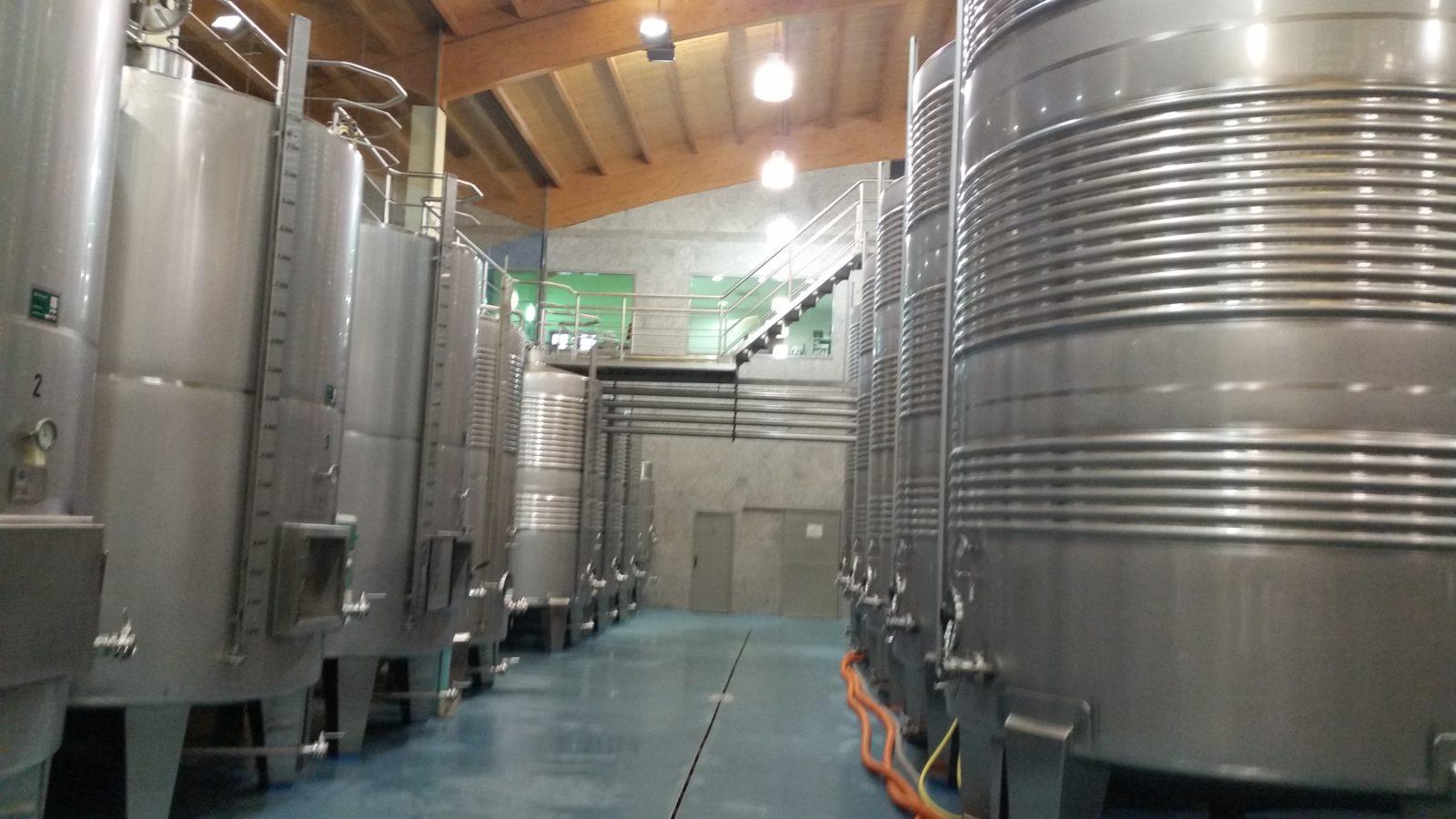 Этапы производства в винодельне Мар де Фрадес