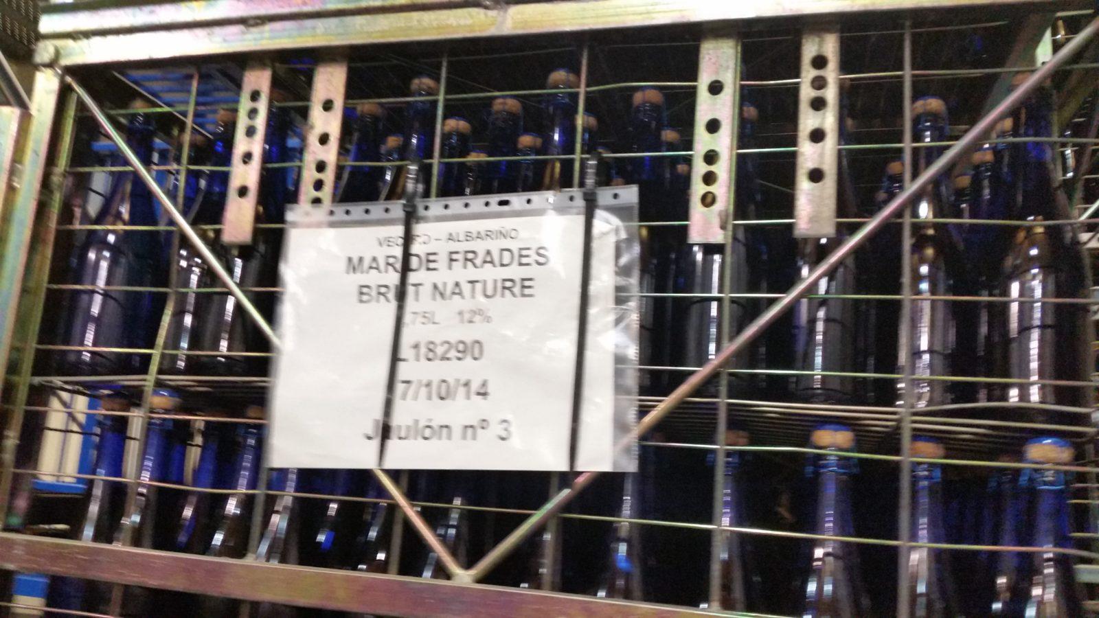 визит на производство в винодельню мар де фрадес
