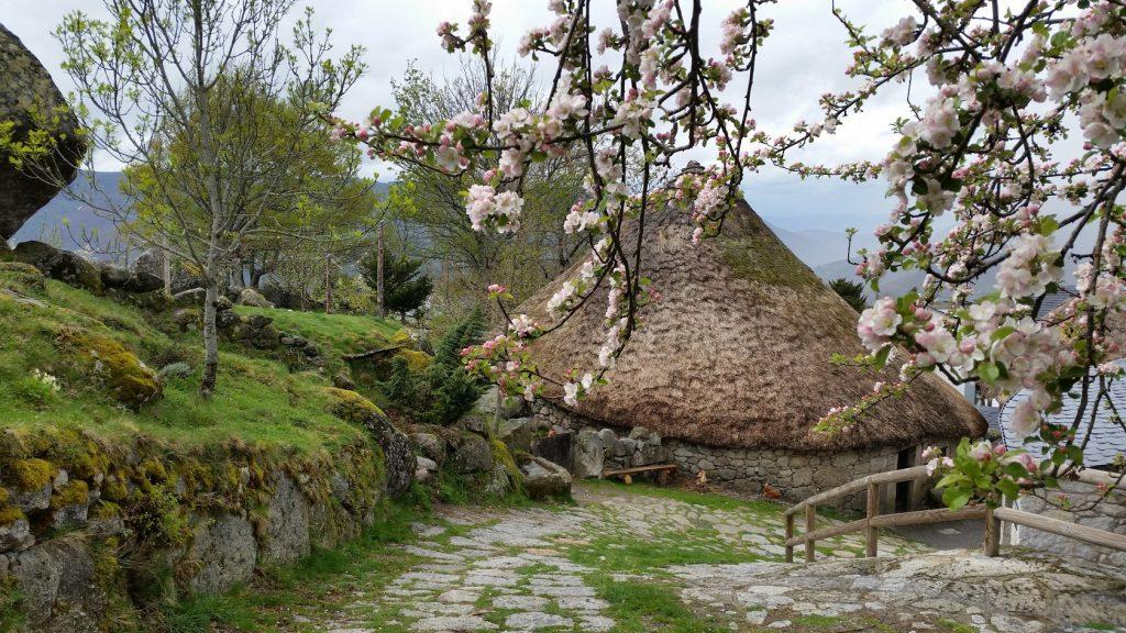 Экскурсии в круглые дома в горах Леона