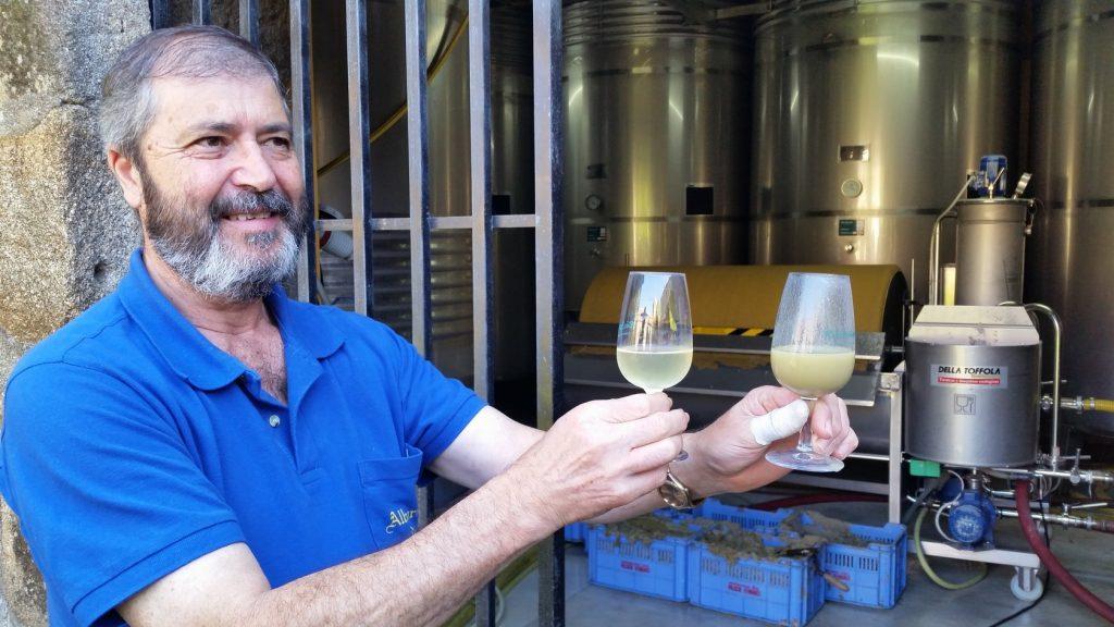Знакомство с этапами производства вина альбариньо