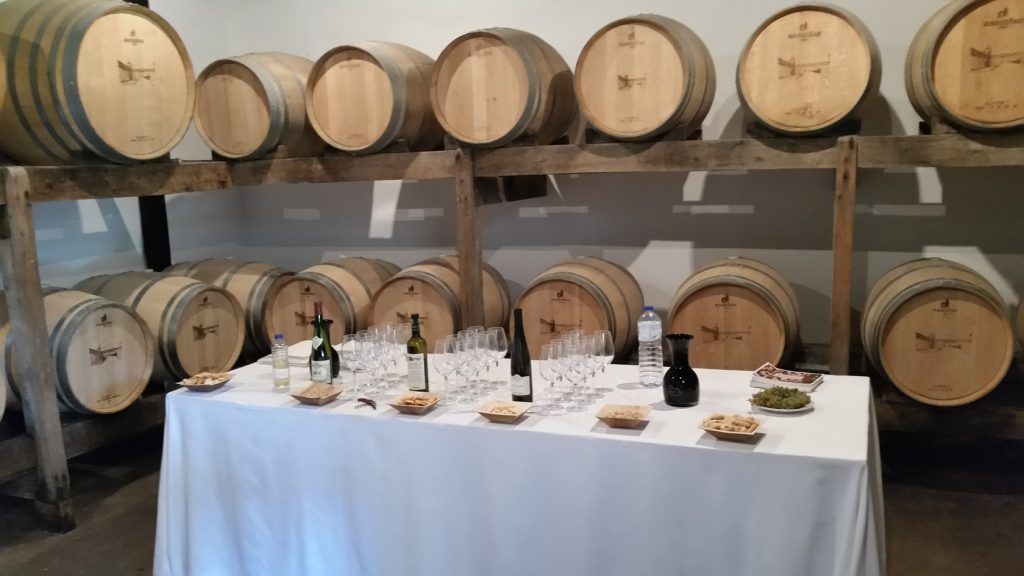 Дегустация вин в винодельнях Галисии
