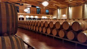 Знакомство с производством вин в Эмилио Моро