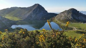 экскурсии в Национальный парк Пики Европы