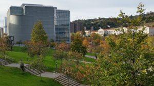 Знакомство с современной архитектурой Страны Басков