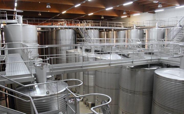 Экскурсия на производство альбариньо в винодельне Пако и Лола
