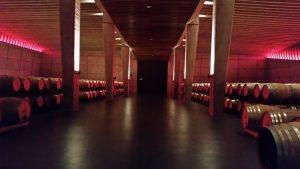 Знакомство с устройством винодельни Портия