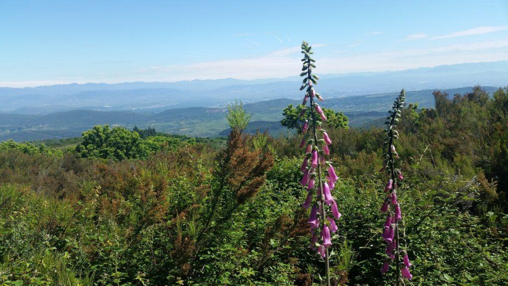 Поездки в горы с гидом по северу Испании