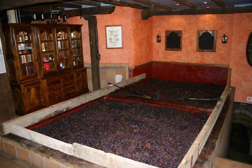 экскурсии в исторические винодельни севера Испании