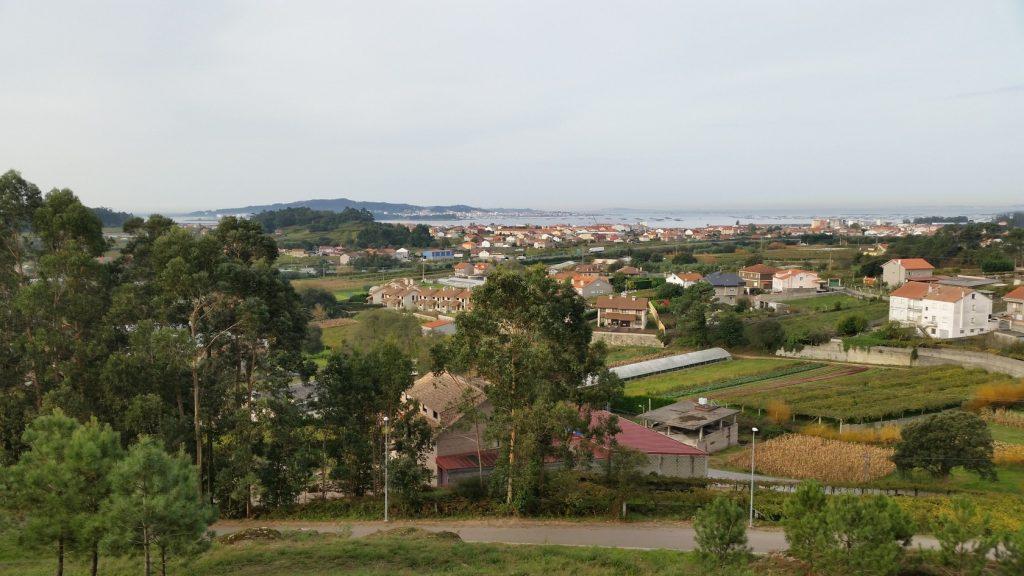 Экскурсии на производство вина Альбаринье в регионе Риас Байшас