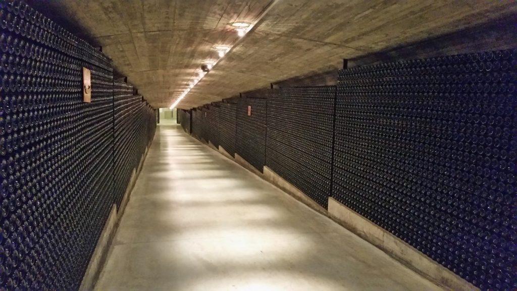 экскурсии на винодельни Риохи 234