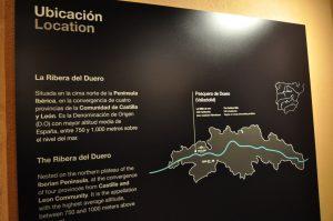 Визиты в зону виноделия Рибера дель Дуэро