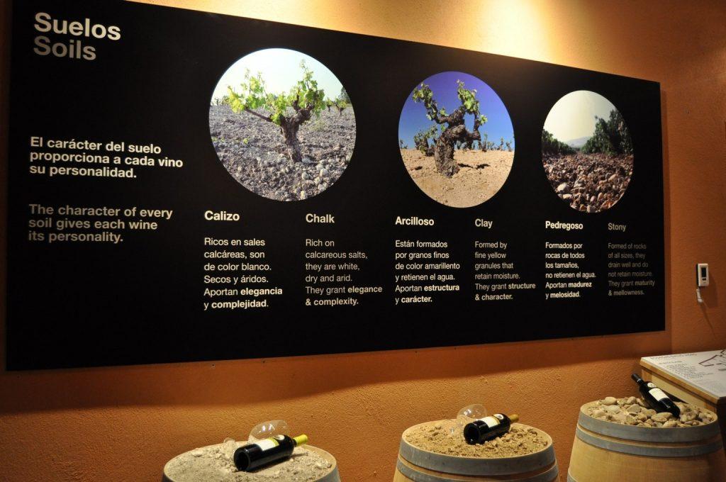 Знакомство с почвами зоны Рибера дель Дуэро