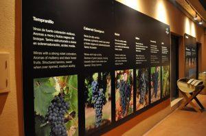 Знакомство с требованиями виноделия в Рибера дель Дуэро