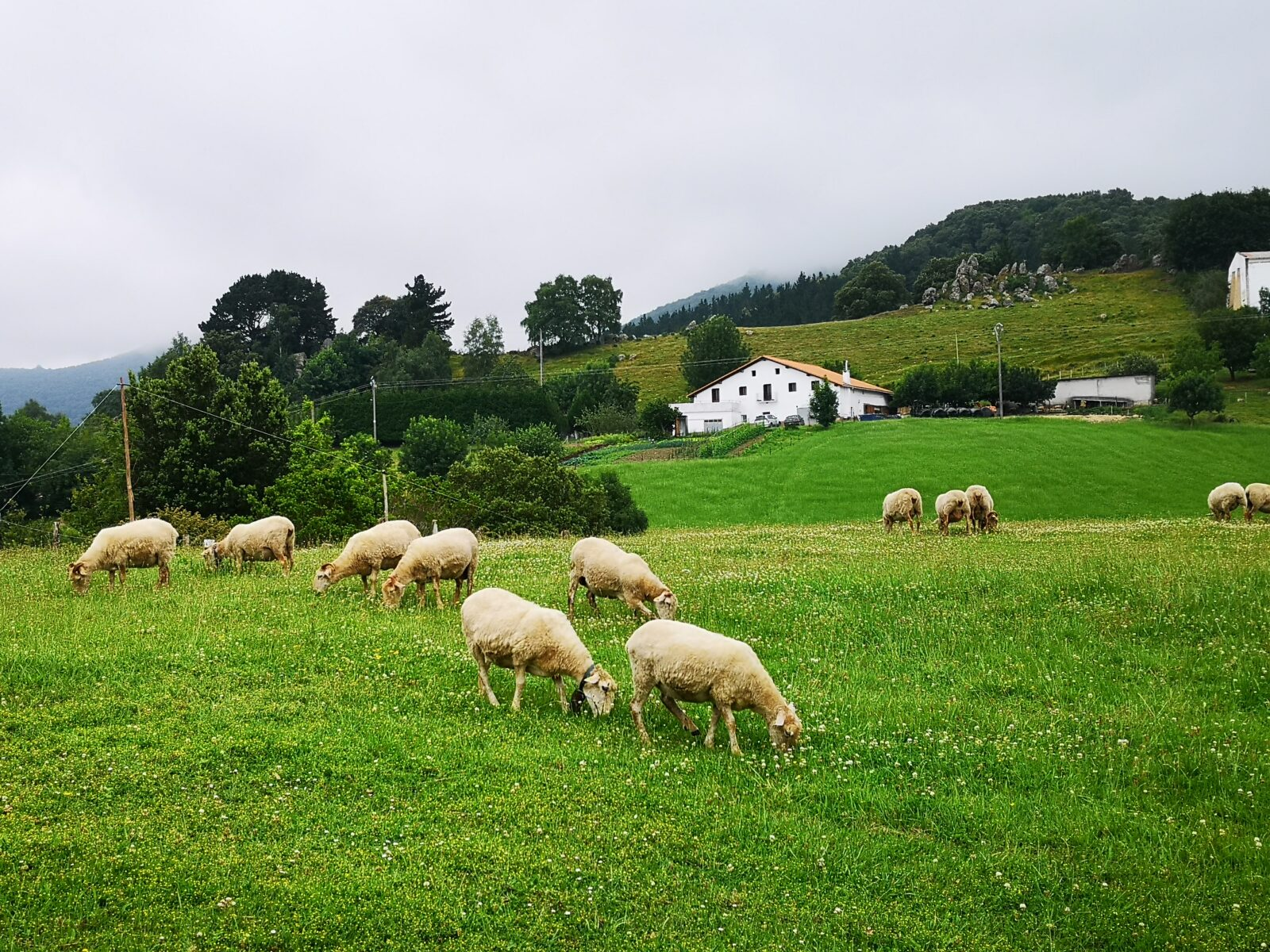 деревенские пейзажи Страны басков