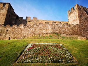 Экскурсии в города с замками