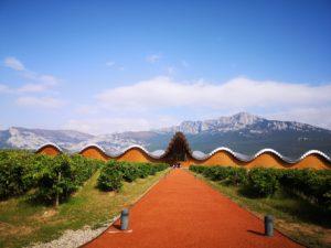 Дегустация лучших вин Риохи