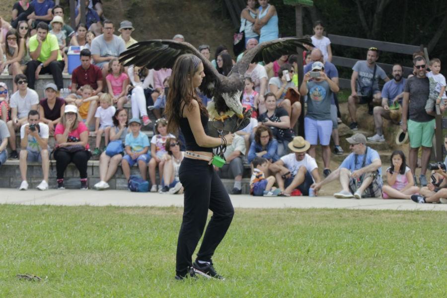 Представления в парке Каварсено с птицами