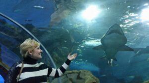 аквариум Сан Себастьяна