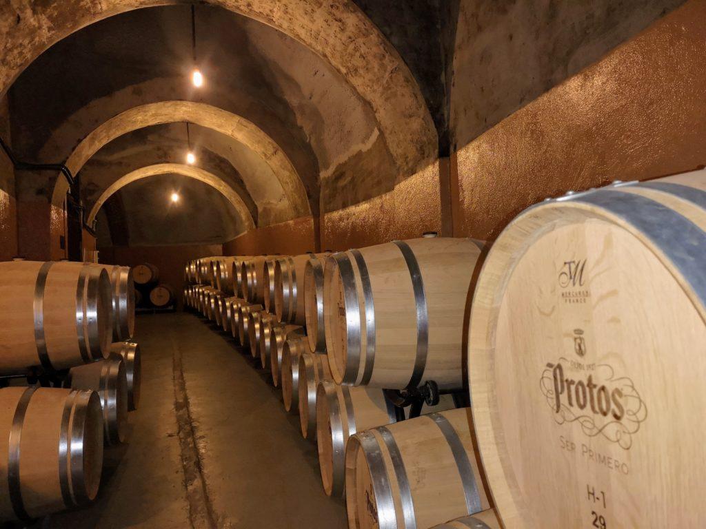 Дегустация топовых вин Протос