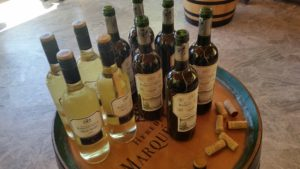 Организация посещений и дегустаций вин в Маркиз де Рискаль