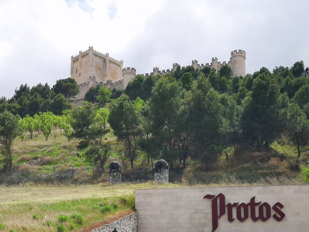 Знакомство с историей виноделия в Рибера дель Дуэро