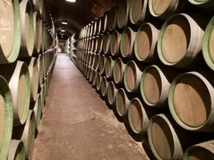 экскурсии на винодельни северной Испании