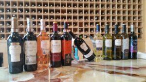 Визиты в лучшие винодельни Риохи с русским гидом 1