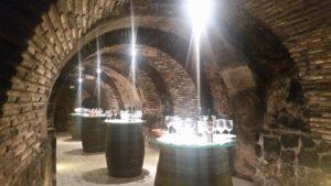 Винные туры в Риоху